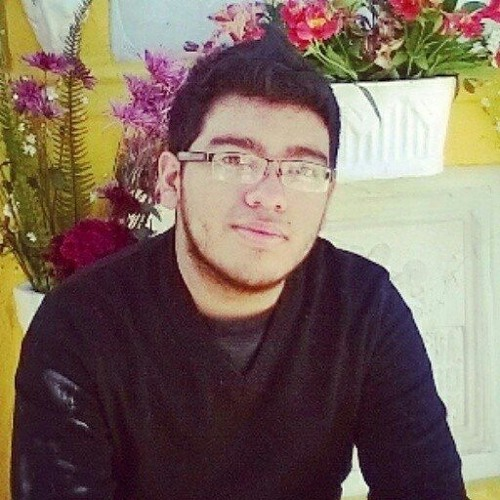 Diego Lavarreda's avatar