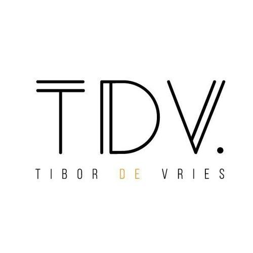 Tibor de Vries's avatar