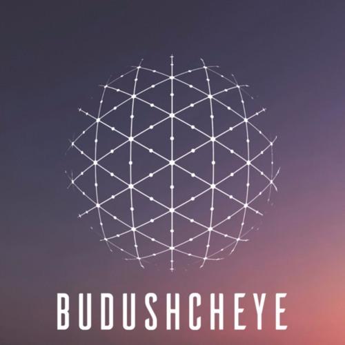 Budushcheye's avatar