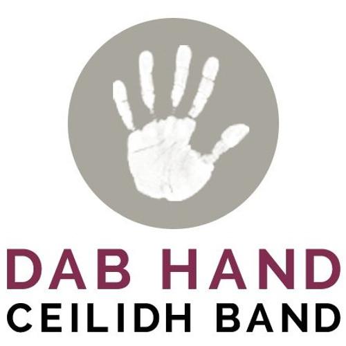 Dab Hand Ceilidh Band's avatar