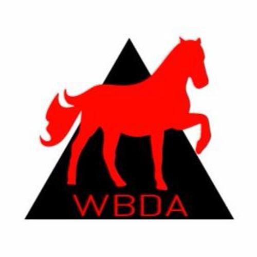 Neon Vandal (WBDA)'s avatar
