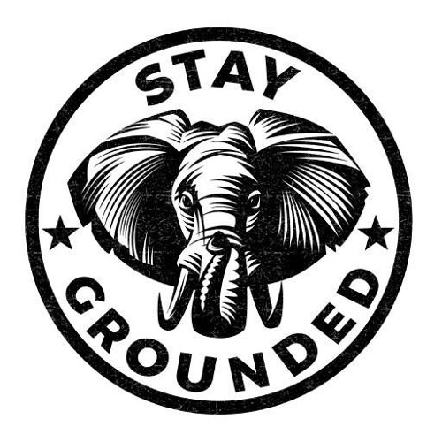 Stay Grounded's avatar