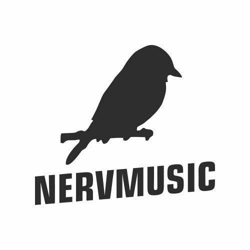Nervmusic Records's avatar