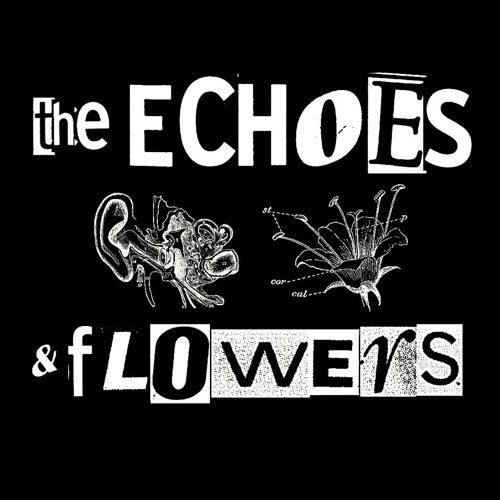 The Echoes and Flowers's avatar