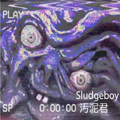 $ludgebo¥'s avatar