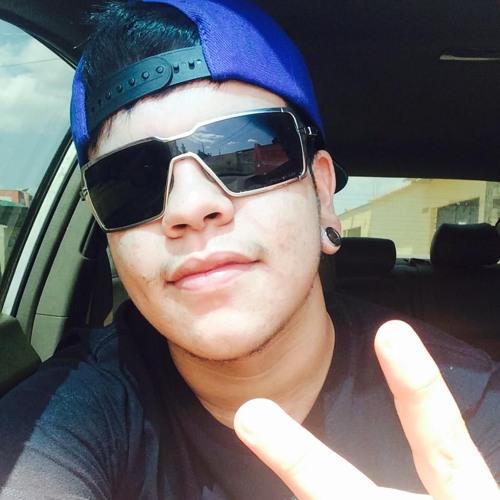 Vinicius Vilchez's avatar