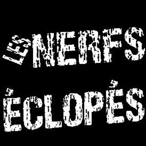 Nerfs Eclopes's avatar