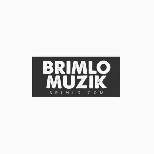 BRIMLO   MUZIK's avatar