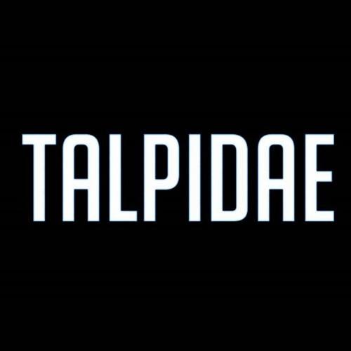 Talpidae's avatar