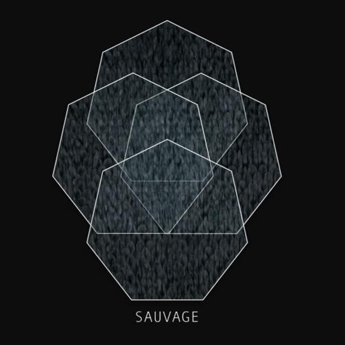 SAUVAGE's avatar