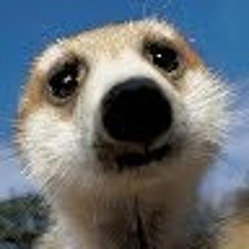 Charlie Rose Baylis's avatar