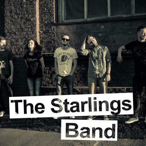 The Starlings Band's avatar