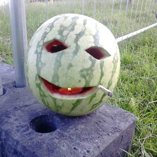 Peter PanDa's avatar