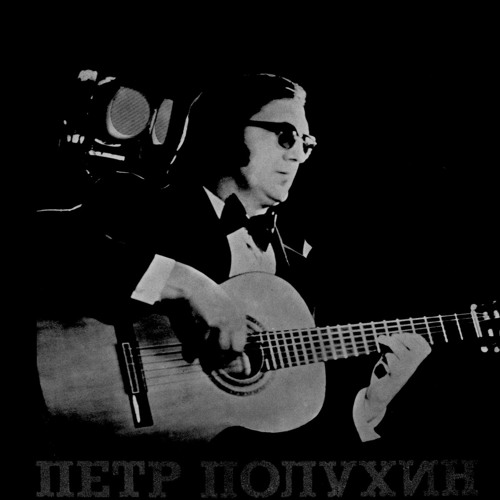 Peter Polujin's avatar