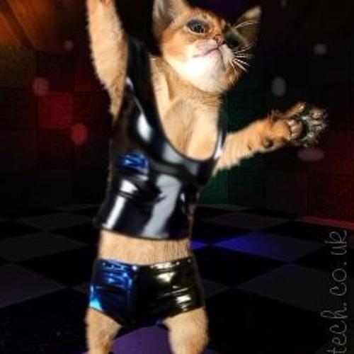 Disco Kitty Bitch's avatar