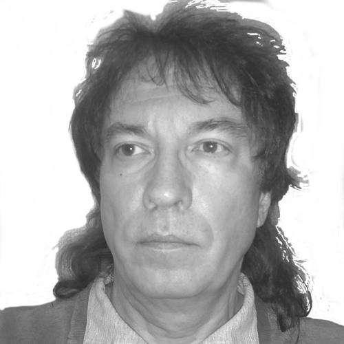 Vollgerd's avatar