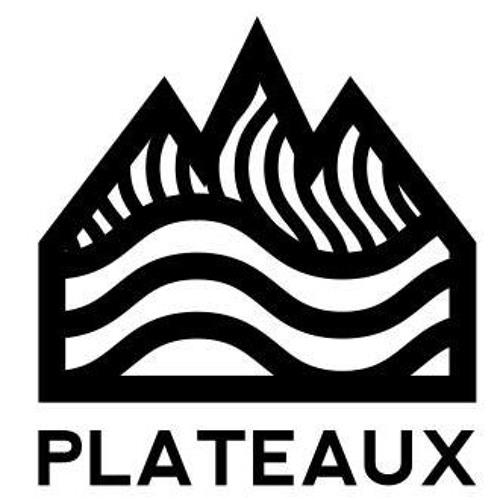 Plateaux's avatar