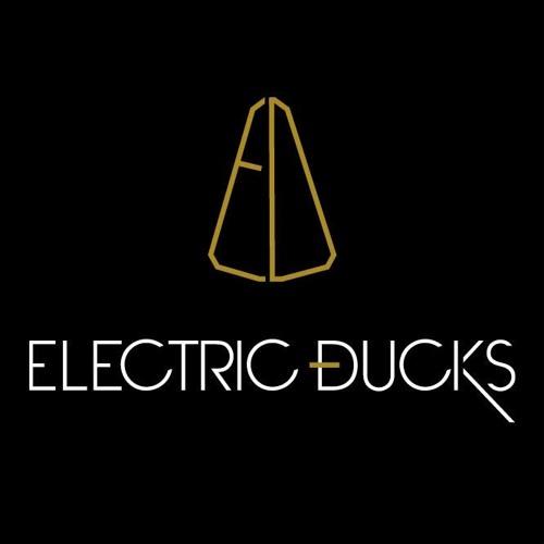 Electric Ducks's avatar