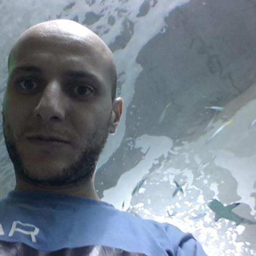 Mohamed Elmallah 2's avatar