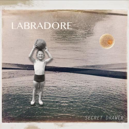 LABRADORE's avatar