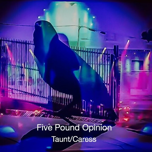 FPO Taunt/Caress's avatar