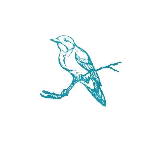 Pflaster's avatar