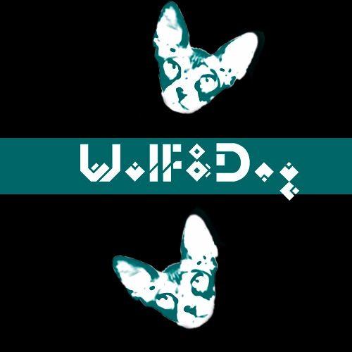 Wolf & Dog's avatar
