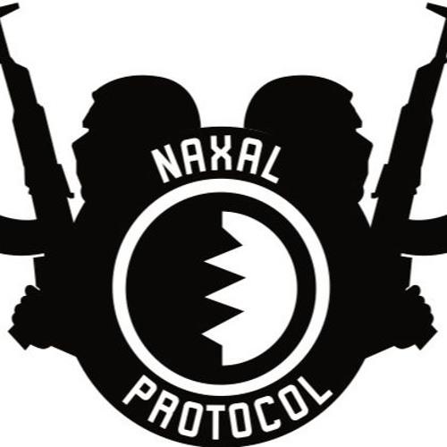 NaxalProtocol's avatar