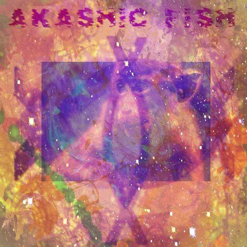 AkashicFishRedFireMonkey's avatar