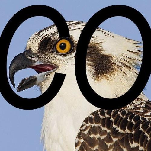 Consonant Osprey's avatar