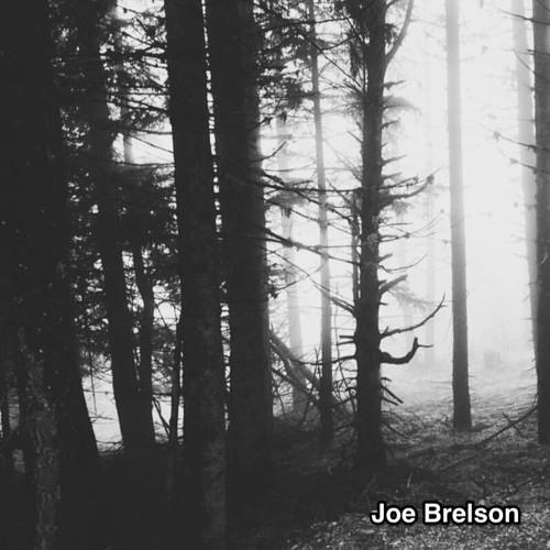 Joe Brelson's avatar