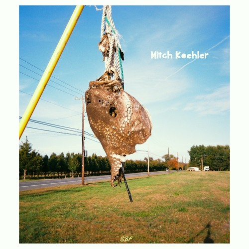 Mitch Koehler (MK13's)'s avatar