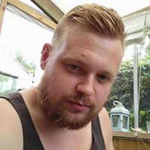 Niklas Elfgren's avatar