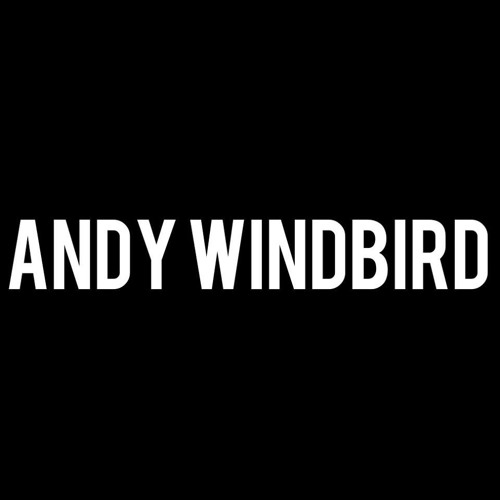 Andy Windbird's avatar
