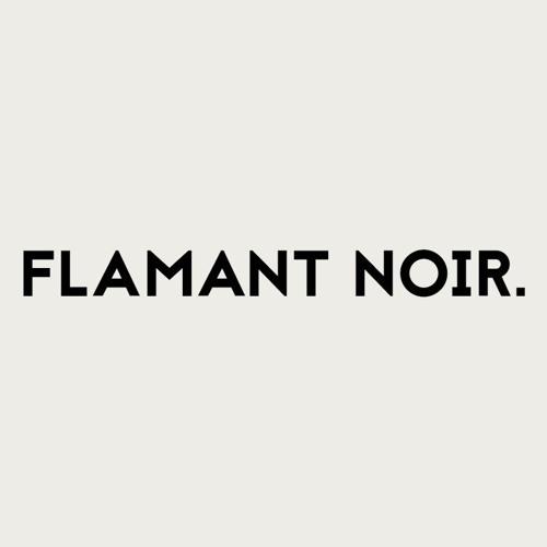 Flamant Noir's avatar