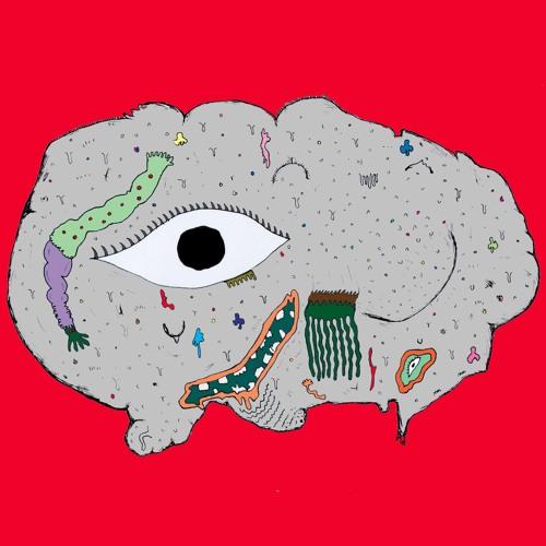 carnivorousplantsociety's avatar