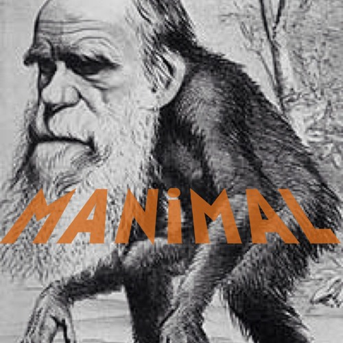 Manimal's avatar