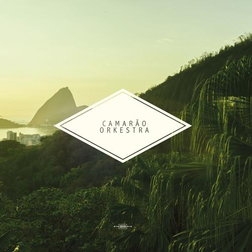 CAMARAO ORKESTRA's avatar