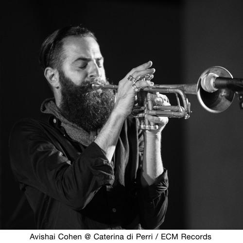 TrumpeterAvishaiCohen's avatar