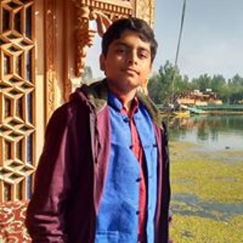 Vamsi Rohit Tummalapalli's avatar