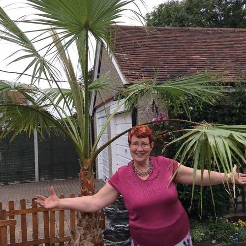 Mavis Ellen Jackson's avatar