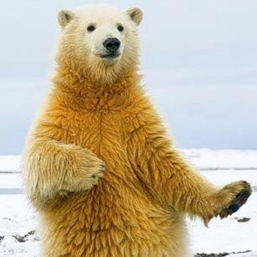 The Dancing Bear's avatar