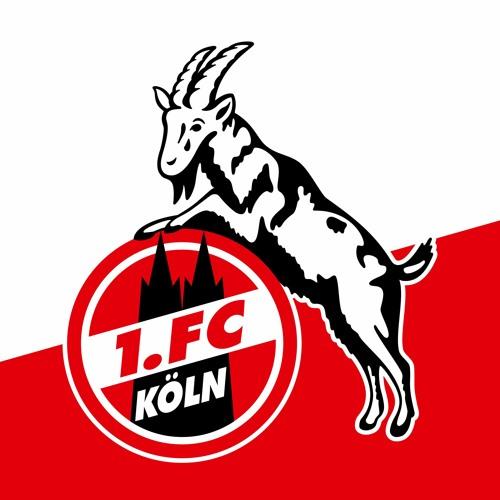 1. FC Köln's avatar