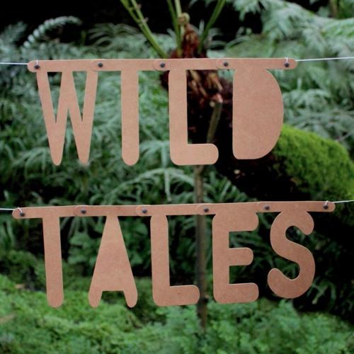 Wild Tales's avatar