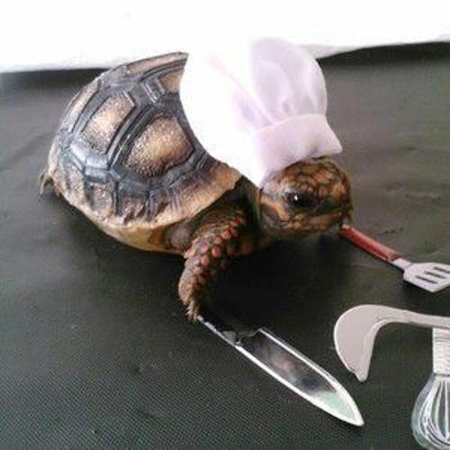 Poop Turtle's avatar