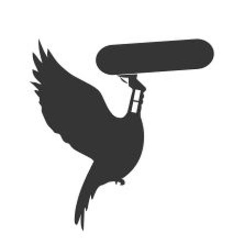Sound Travel's avatar