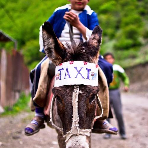 TaxiTaxi's avatar