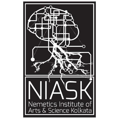 Nemetics Institute's avatar