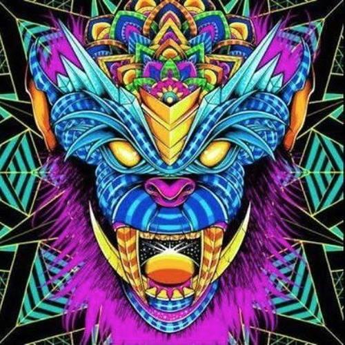 Oren Kadosh's avatar