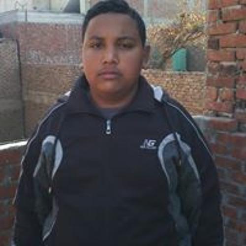 Mahmoud Mamdouh's avatar